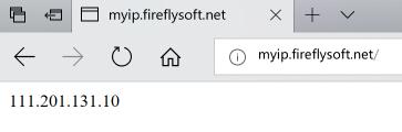 使用HTTP请求获取你的公网出口IP